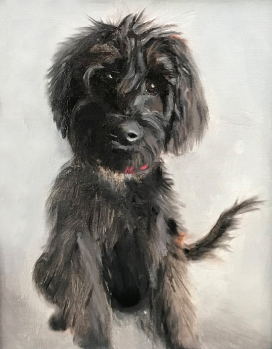 Labradoodle Oil Painting